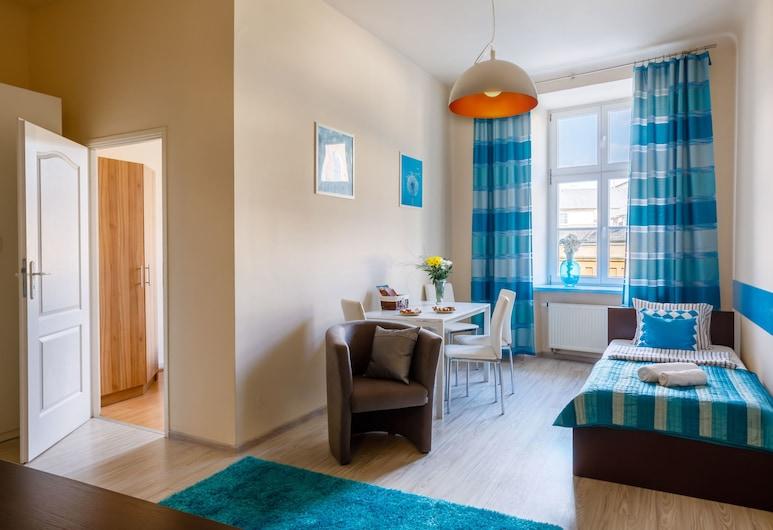 OK Apartments Old Town, Krakow, Leilighet – comfort, 2 soverom, utsikt mot byen, Stue