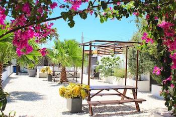 Picture of Aruba Lagunita in Noord