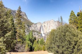 Gambar Yosemite Scenic Wonders - Bass Lake Area di Oakhurst
