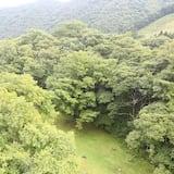 傳統客房 (Japanese Style) - 山景