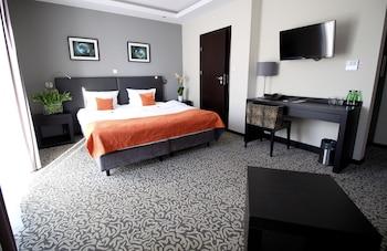 Picture of Malta Premium Hotel in Poznan