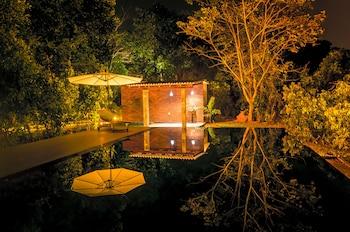 Foto del Garcinia Leaf en Hikkaduwa
