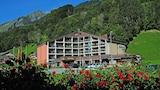 Foto av Hotel Sardona i Glarus Sued