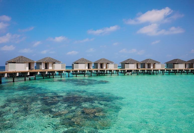 馬爾代夫阿瑪瑞好沃達渡假酒店, 阿馬里哈沃達, 別墅, 水上, 海灘