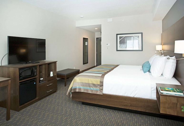 Wingate By Wyndham Calgary Airport, Calgary, Business Room, 1 King Bed, Non Smoking, Guest Room