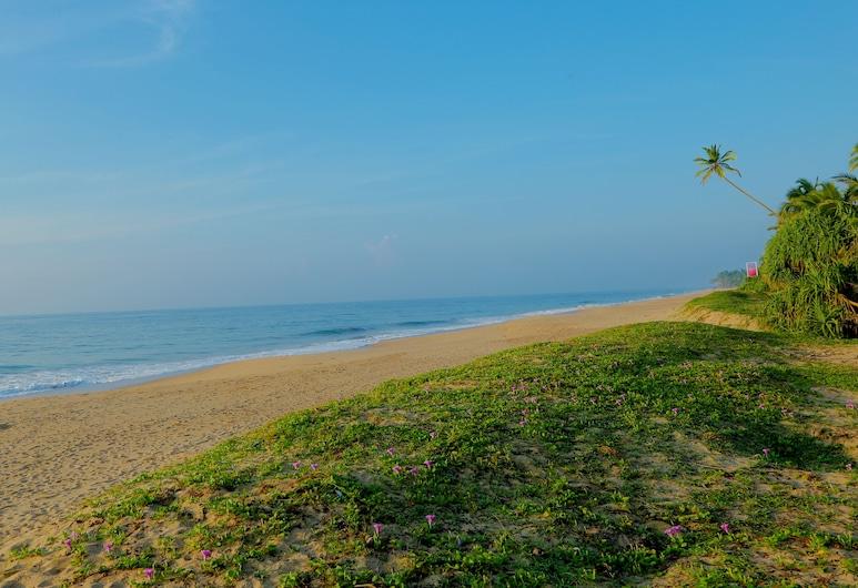 自然蘭卡阿育吠陀渡假村, 唐加勒, 海灘