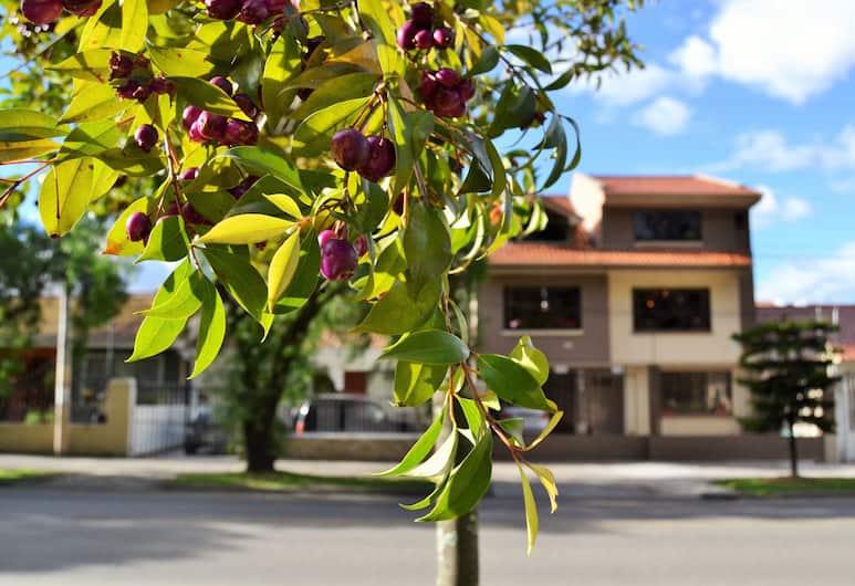 Hostal Kolibri, Cuenca, Giardino
