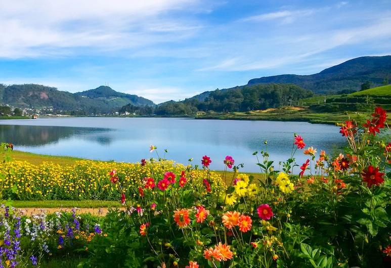 فيلا تي فيلدز, نوَرا اليا, البحيرة