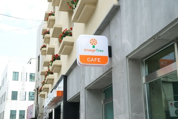 Picture of Orange Tree Hotel & Cafe in Jeju