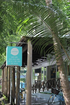 Picture of Port Douglas Backpackers in Port Douglas