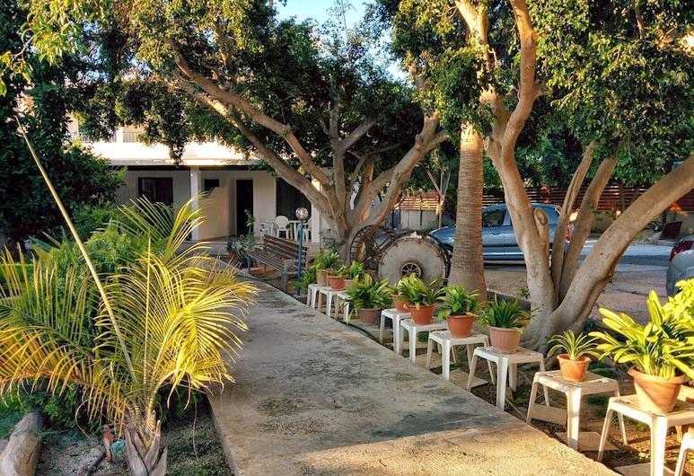 Zoe's Court, Paphos, Garden