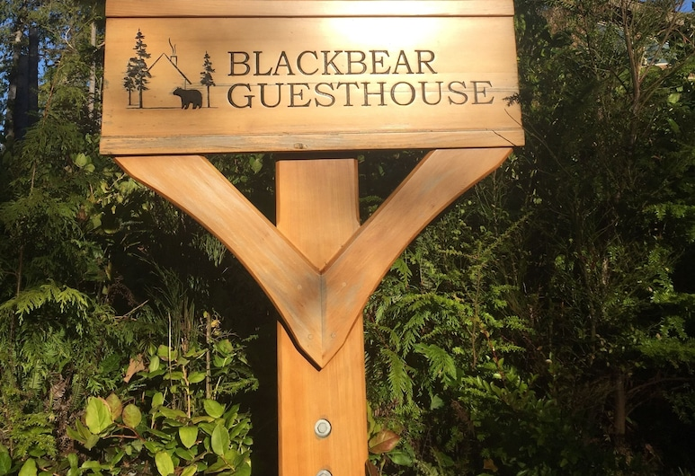 Black Bear Guesthouse, โตฟิโน
