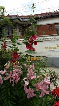 Foto van Birdsnest Hostel Hongdae in Seoel