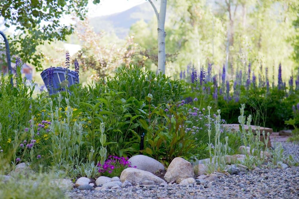 Comfort-Zimmer, Eckzimmer - Blick auf den Garten