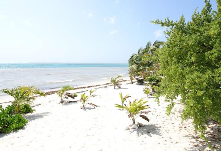 莎拉曼德拉酒店, 阿範特拉斯港, 海灘