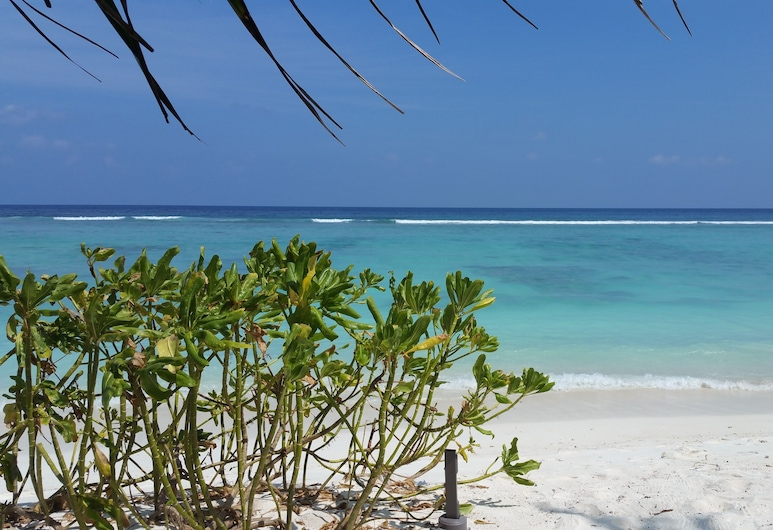 Vista Beach Retreat, Hulhumalé, Spiaggia