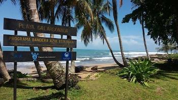 Foto di Villas Del Caribe a Puerto Viejo de Talamanca