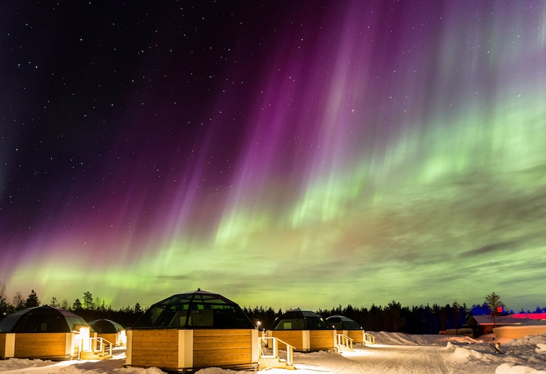 Arctic SnowHotel & Glass Igloos, Rovaniemi, Hótelgarður