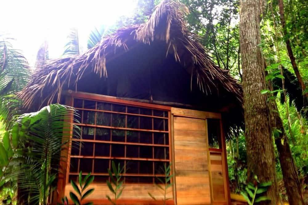 Standard Single Room, 1 Double Bed, Garden View - Room
