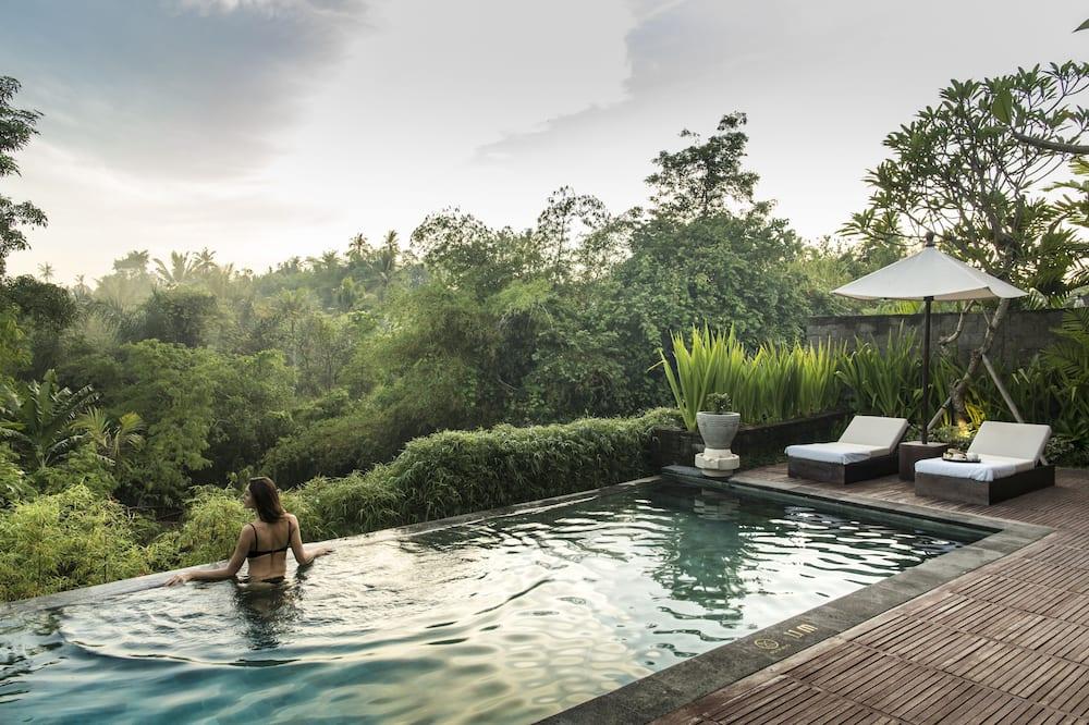 Vila typu Deluxe, 1 spálňa, výhľad na rieku (Journey Package) - Vonkajší bazén