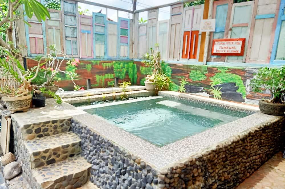 Pagerinto tipo vila - Atskiras baseinas