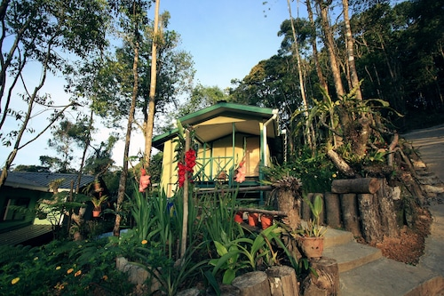 Kinabalu