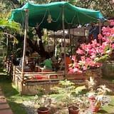 Tradicionāla kotedža - Dzīvojamā zona