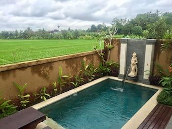 Ubud bölgesindeki Uma Padi Villa resmi