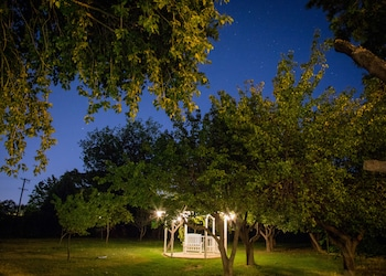 Picture of Red Horse Vineyard Bed & Breakfast in Albuquerque