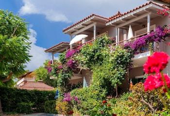 Picture of Lemonia Accommodations in Zakynthos