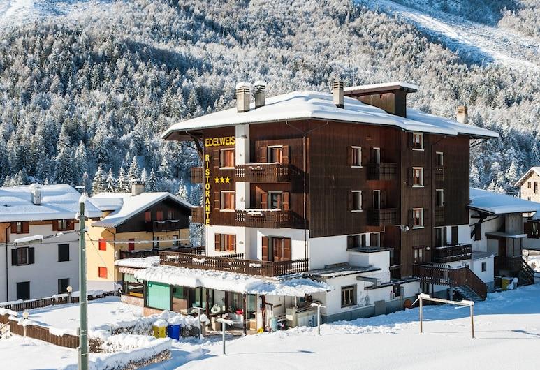 雪絨花飯店, 弗尼迪索普拉, 飯店正面