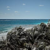 Plaj/Okyanus Manzarası