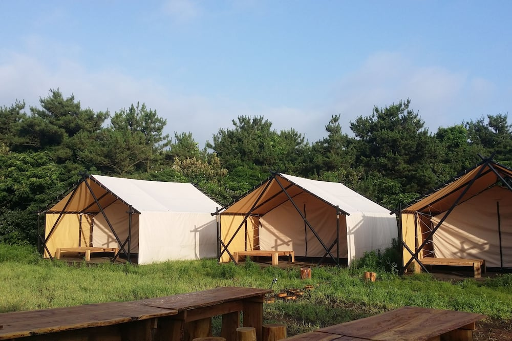 Blue Night Glamping House in Udo - Caravan Park