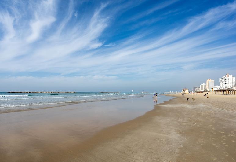 The Promenade Art - By TLV2GO, Tel Aviv, Pláž