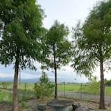 Sân vườn