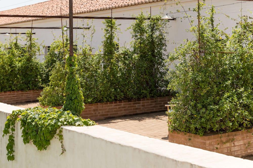 Room (Farm) - Balcony