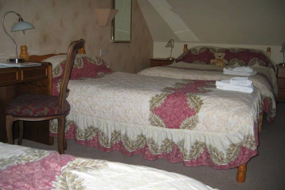 Štandardná izba s dvojlôžkom alebo oddelenými lôžkami - Hosťovská izba