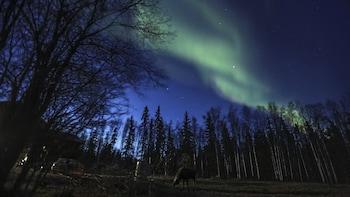 Hotellerbjudanden i Fairbanks | Hotels.com