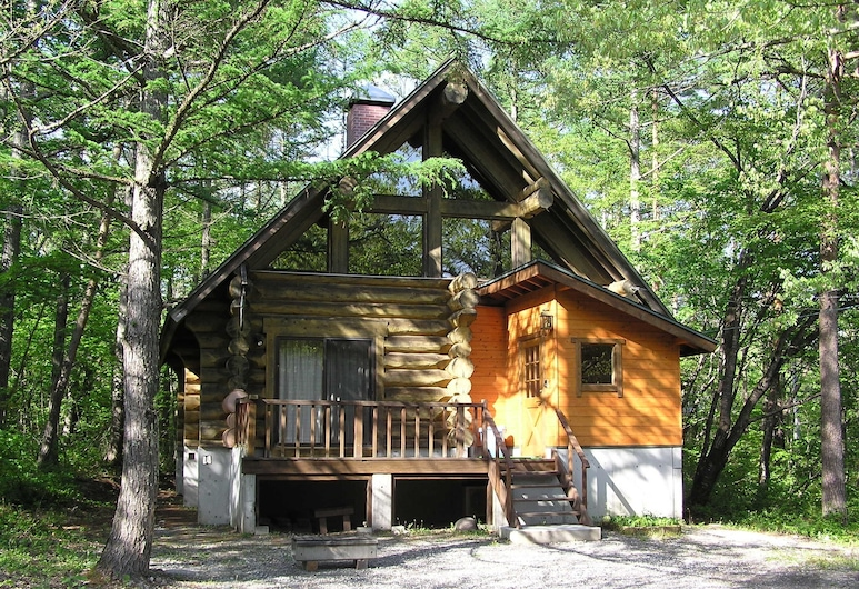 Rental Cottage Green Valley Hakuba, האקובה, אזור חיצוני