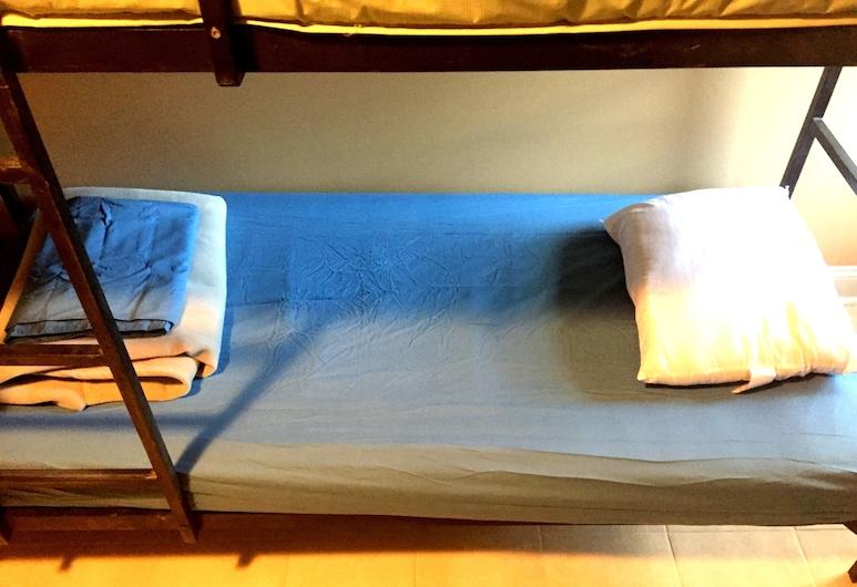 DC International Hostel 2, Washington, Delad sovsal - Basic - sovsal (män och kvinnor) (4-bed), Gästrum