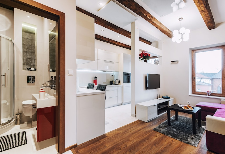 EchoDom 4 Apartments Szlak, คราคูฟ, สตูดิโอ (Sw.Filipa 21/12 street), พื้นที่นั่งเล่น