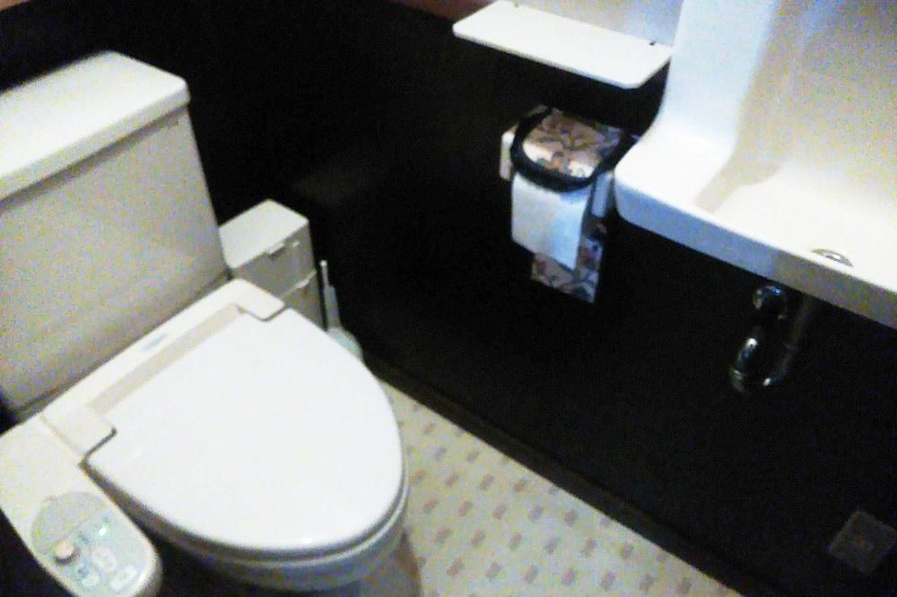 Semi Private Room (max 3) Three-stage bed - Bathroom