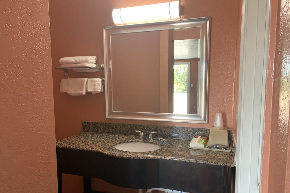 Tek Kişilik Oda, 1 En Büyük (King) Boy Yatak, Sigara İçilmez - Banyo