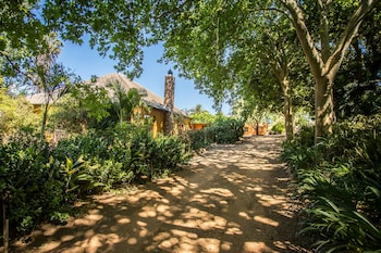 Picture of Dirtopia Trail Lodge in Stellenbosch
