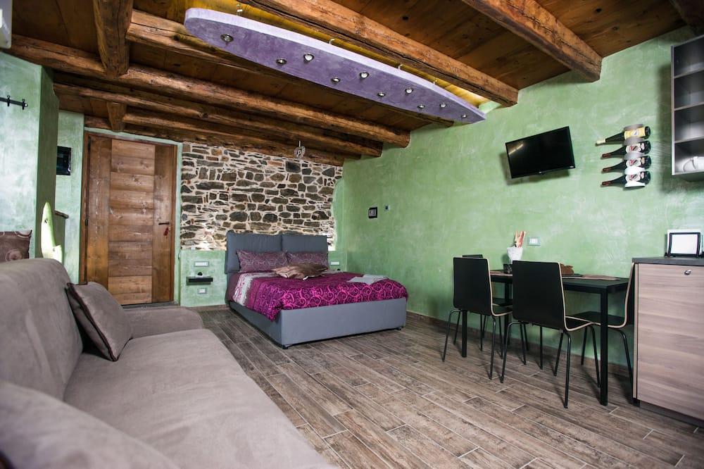 Išskirtinio dizaino apartamentai, 1 miegamasis - Svetainės zona