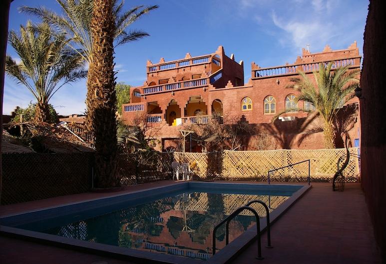 Maroc Galacx, Tarmigt