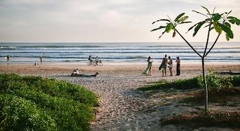 Bild vom Olas Verdes Hotel in Nosara