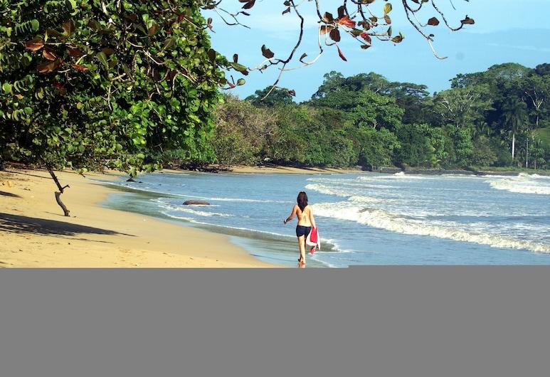 Jardines Vista del Mar Condos, Bocas del Toro, Beach