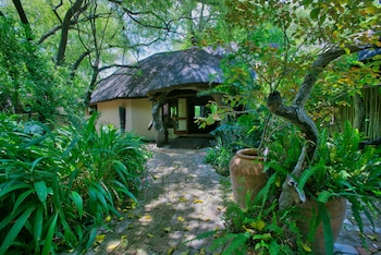 Picture of Royal Tree Lodge in Maun