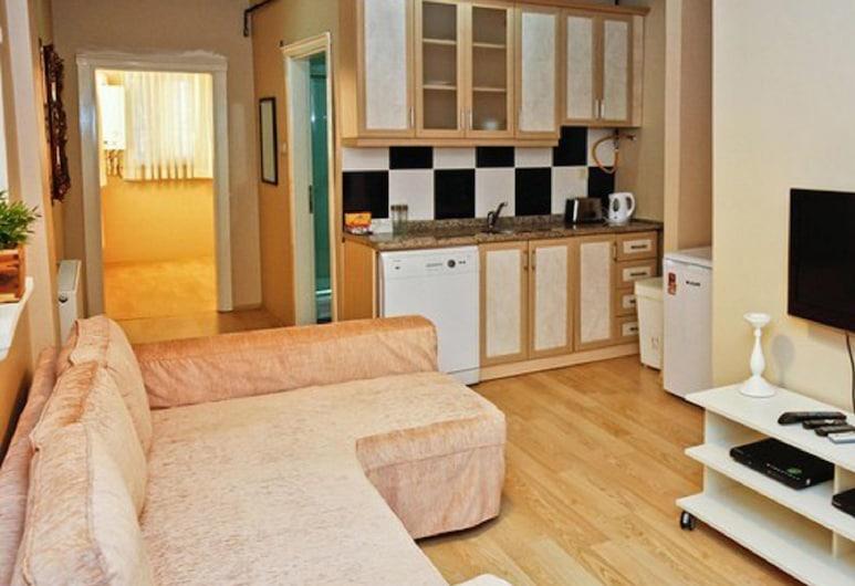Detay Apart, Istanbul, Căn hộ tiện nghi đơn giản, 1 phòng ngủ, Phòng
